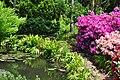 Грузия , ботанический сад - panoramio (2).jpg