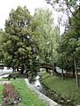 Копривщица - panoramio (26).jpg