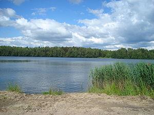 Zhukovsky District, Bryansk Oblast - Lake Svyatoye, a protected area of Russia in Zhukovsky District