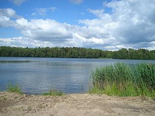 Zhukovsky District, Bryansk Oblast District in Bryansk Oblast, Russia
