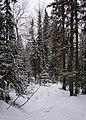 Национальный парк Таганай (48).jpg