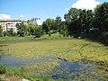 Озерце на БАМі.jpg