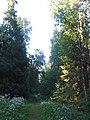 Орлова роща тропинка.jpg