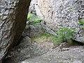 Укрытие между скалами - panoramio.jpg