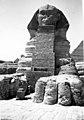 טיול במצרים חורף 1946 - iתמר אשלi btm10782.jpeg