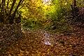 پاییزدر ایران-قاهان قم-Autumn in iran-qom 10.jpg
