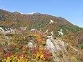 五色(Goshiki) - panoramio.jpg