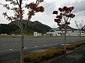 大和町総合運動公園 - panoramio.jpg