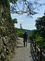 岐阜県郡上市八幡町 - panoramio (1).jpg
