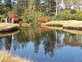 湿原の色彩 - panoramio.jpg