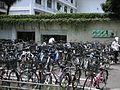 臺灣大學 - panoramio - Tianmu peter.jpg