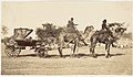 - A Travelling Camel Carriage from Lahore to Peshawar, Governor General's Camp- MET DP146176.jpg