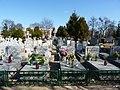 - Cmentarz Nowofarny - panoramio (15).jpg