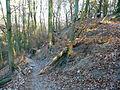 15-02-08-Aussichtsturm-Eberswalde-Brunnenberge-RalfR-P1040305-12.jpg