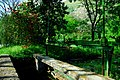 150510 172118 Giardino di Ninfa.jpg