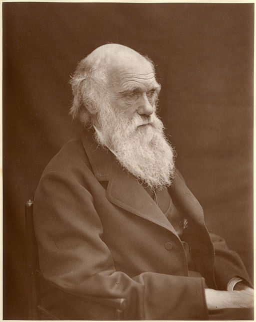1878 Darwin photo by Leonard from Woodall 1884