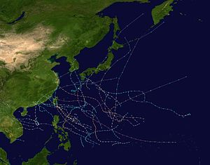 1961 Pacific typhoon season summary.jpg