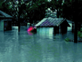 1998 South Central Texas Flood 1.png