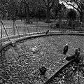 20.11.1961. Animaux au jardin des plantes. (1961) - 53Fi3080.jpg