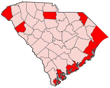 south carolinas republican primary - 771×618