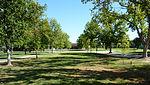 2009-0725-CA-CSUF-TreeWalk.jpg