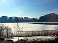 2012 'Seegfrörni' - Türlersee - Hausen am Albis 2012-02-18 13-28-14 (SX230).JPG
