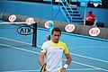 2013 Australian Open IMG 4867 (8392647157).jpg