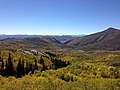 2014-10-04 13 43 52 View of Aspens during autumn leaf coloration from Charleston-Jarbidge Road (Elko County Route 748) in Copper Basin about 9.5 miles north of Charleston, Nevada.jpg