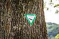20150522 Schutzschild zum Baumbestand am Moselradweg Trier - IMG 4466 by sebaso.jpg