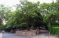 2015London, Woolwich-Plumstead, Shrewsbury Park, Plum Lane entrance 01.jpg