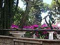 2016 Capri 15.jpg