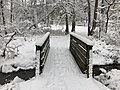 2018-03-21 12 15 30 View along a snow-covered walking path as it crosses a bridge over a tributary of the Flatlick Branch of Cub Run in the Franklin Glen section of Chantilly, Fairfax County, Virginia.jpg