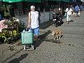 2644Baliuag, Bulacan Poblacion Proper 57.jpg