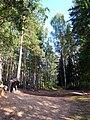 3136. On the shores of Mednozavodskoy Razliv Lake.jpg
