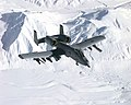 355th Fighter Squadron A-OA-10 Thunderbolt II, Exercise Northern Edge '99 on March 9, 1999.jpg