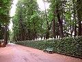 5620. St. Petersburg. Summer Garden (2).jpg