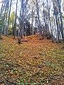 565 01 Choceň, Czech Republic - panoramio (34).jpg