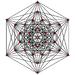 6-demicube graph.png