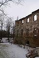 629viki Ruiny zamku w Pankowie. Foto Barbara Maliszewska.jpg