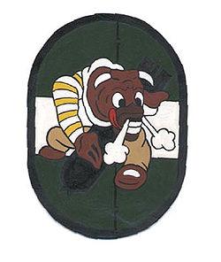 855thbombsquadron-emblem.jpg