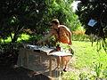 8 Zámek Veltrusy, kuchyňská zahrada.jpg