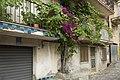 95012 Castiglione di Sicilia CT, Italy - panoramio (12).jpg