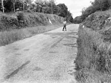 AWM 117486 Cutting near Gemas Malaya 1945.JPG