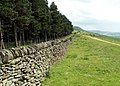 A Boundary Wall alongside Woodland Valley - geograph.org.uk - 473325.jpg