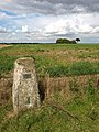 A Wolds' Trigpoint - geograph.org.uk - 926594.jpg