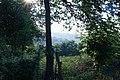A view - panoramio.jpg