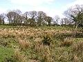 Abandoned Farm, Fogart - geograph.org.uk - 157888.jpg
