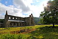 Abbey Church of St Mary (Tintern Abbey).JPG