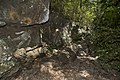 Aboriginal rock at in Mt Coot-tha Forest (6971552908).jpg
