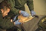 Advanced Casualty Sustainment Care-006 (25034537921).jpg